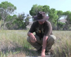 How to Make An Animal Snare For Wilderness Survival
