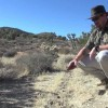 Tracking Deer in the High Desert
