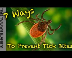 7 Way to Prevent Tick Bites and Lyme Disease while Camping, Hiking, Fishing or Hunting
