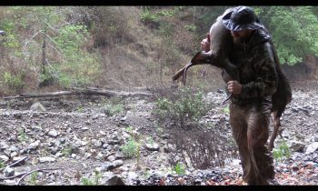 The Hunt & The Harvest – Hunting Deer, Wild Pig & Meateating in California