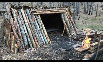 Primitive Survival Hut Winter Bushcraft Shelter Overnight