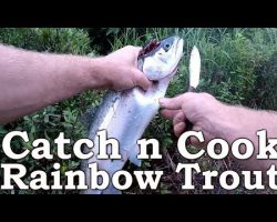 Catch n Cook Fish   Rainbow Trout   Beyond Survival   The Wilderness Living Challenge 2017   S02E05