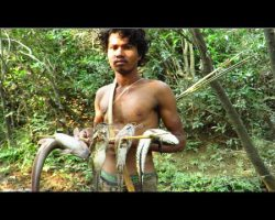 Primitive Technology – Find food in river – grilled Fish and eating delicious