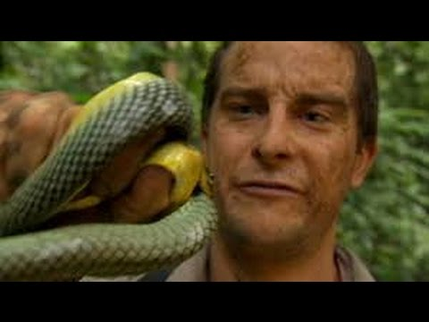Bear grylls xxx images thought