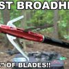 BEAST Broadhead! Four Blade Expandable