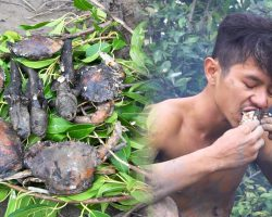 Primitive Technology: Catch fish and crab in marsh and bake right there | Wilderness Technology