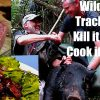 Wild boar – Track it Kill it Cook it.