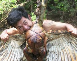 Primitive technology: Hunting turkey by the super cool crossbow. Cooking turkey in the deep forest