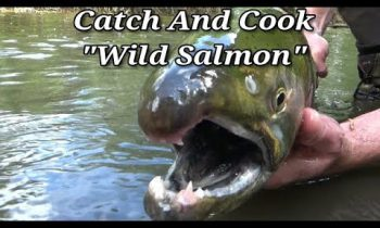 Survival Fishing – Catch Clean and Cook Salmon Stream Side!
