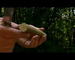 Ray Mears – Cutting with a Knife, Bushcraft Survival